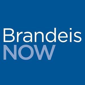 brandeis application essays